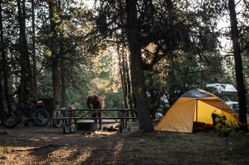 Colter Bay Campground in Morning Light
