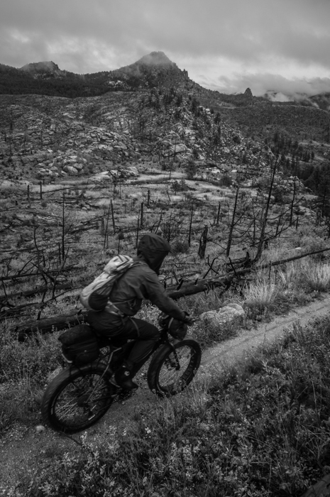 Dave biking through Remnants of the Hayman Fire
