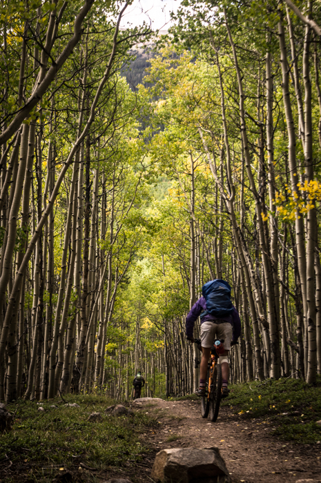 Riding Through Aspen Groves at the Base of Mt. Elbert