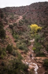 Toiling Hike-a-Bike