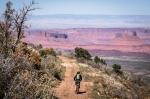 Mobbing Towards Moab