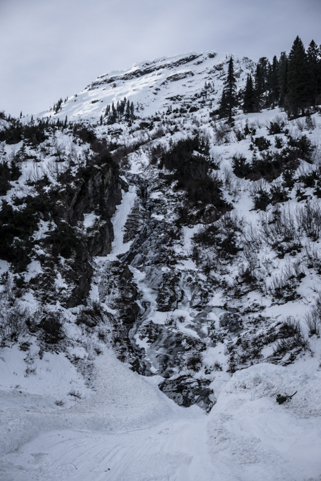 Avalanche Scoured Creek Bottom and Icy Cascade Below Nyack