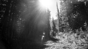 Most Excellent Trails...