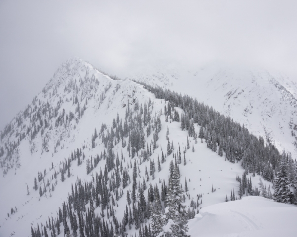 A Beautiful Winter Day in the Middle Fork